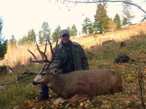 Scott's Deer 4