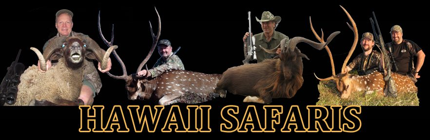 Hawaii Safaris Logo
